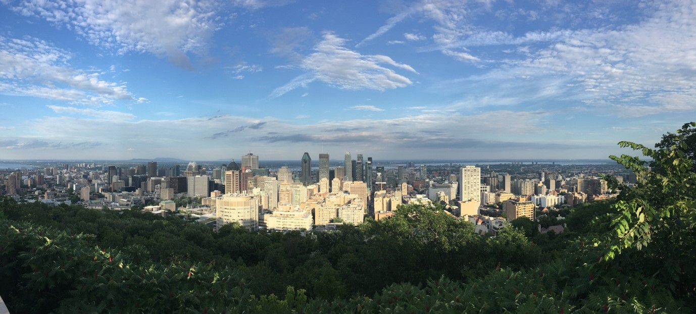 view from mt royal